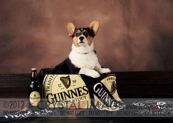 Guinness3057Elr